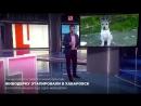 алена савченко, хабаровские живодерки, репортаж с лайф ру, алина орлова 1