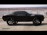 "WhipAddict׃ Worlds First Dodge Challenger R⁄T on 34"" 964 Rockstarr Wheels by Underground Rim King"