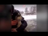 Черныш, с*ка, держись! Кто отправился на помощь тонущей собаке в Псковской области?