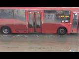 Красные автобусы законам физики не подвластны