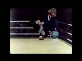 Метеор на ринге (1970)