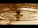 Пепел и снег (2005) HD суб