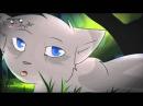 Искра и Голубка Коты воители Песня красной шапочки