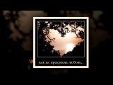 Красивая лирика 2015 СТИХИ И ПЕСНИ О ЛЮБВИ! Поэт-песенникТатьяна Казачкова ЛЮБОВЬ, КАК НАГРАДА