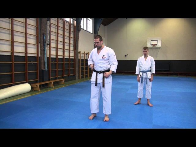 Wadokai Karate Seminar: Kata Niseishi - ニセイシ 解説 形