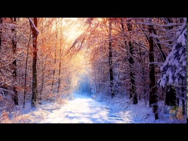 Зимняя сказка Просто отдохните Удивительная музыка Сквозь вьюгу звонок у двери и на пороге ТЫ