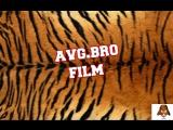avg.bro FILM 2