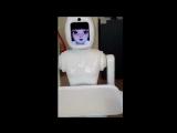 Робот в Калининграде