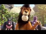 Упс… Ной уплыл! (2015) _ RUS Трейлер [720p] [720p] [720p]
