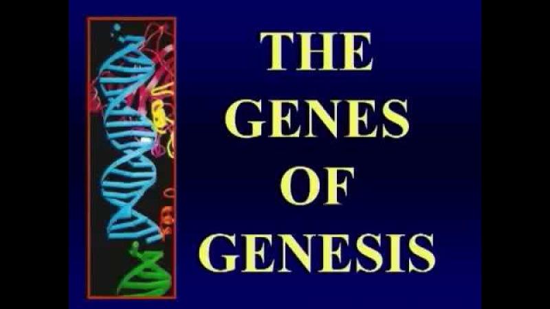 Вальтер Вейт (Вайс) Walter Julius Veith Гены генезиса часть 1