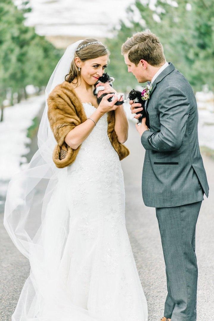 AeWi6kuMzeU - Свадьба с котятами – мировой тренд в организации свадеб (13 фото)