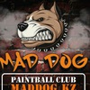 Пейнтбольный клуб MadDog