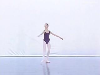 Beijing Academy of Dance (Vol 7) Пекинская академия танца (Том 7)
