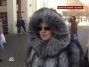 НТВшники Если не Путин, то кто (29.01.2012)