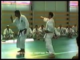 Asai, Kato, Kagawa, Dormenko 1994