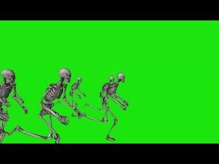 Caveiras Correndo #1 - Skeletons Running #1 [Fundo Verde - Green Screen]