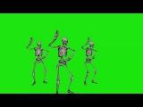 Caveiras Dançando #1 - Skeletons Dancing #1 [Fundo Verde - Green Screen]