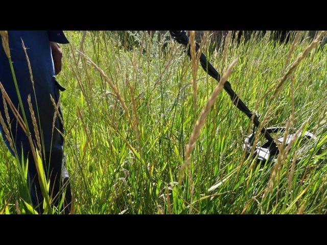 Как искать селища на поле с высокой травой Кротовые норы