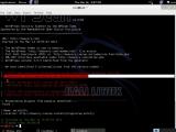 WPScan on Kali - Linux