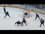 Гол Давида Думбадзе в мачте Сокол - Дизель(Пенза) 4-3Б от 10.12.2016