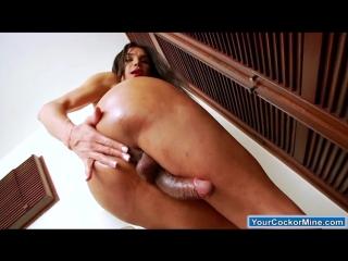 Shemale Kalliny Nomura jerks off her big cock