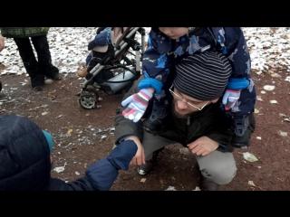 Санька, Антоний, Вася и снежок (был один — стало два)