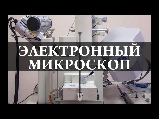 Электронный микроскоп Химия –просто