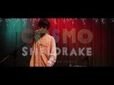 Cosmo Sheldrake - Live Improv in London - Track 7 (The Falcon cover)