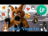 Furry Vines #21