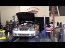 2000 Mustang GT w/ F-1 Procharger