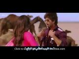 Saree Ke Fall Sa اغنية هندية رائعة مترجمة شاهيد كابور وس&
