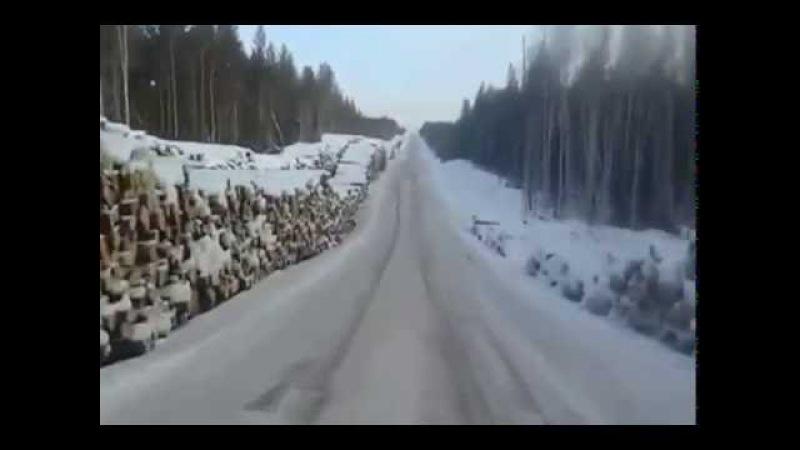 Иркутская область Российский лес уходит в Китай