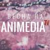 AniMedia.TV | Всё лучшее для Вас | Аниме онлайн