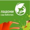 "Сад бабочек ""Чудо на ладони"" в ТРК Лето"
