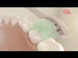 Как обойтись без зубной пасты. НашПотребНадзор
