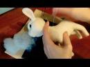 Козочка из шерсти - Сухое объемное валяние