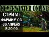 NEVERWINTER ONLINE - Стрим Фармим Очки совершенствования
