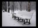 Петергоф Зима. Petrodvorets Winter