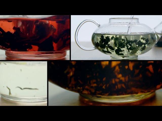 Предметная видеосъемка для компании Kitfort Чайник KT-613