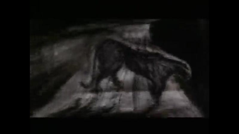 Пантера (Вук Евремович,1998)