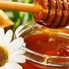 Мед в Рязани