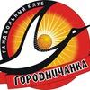 """ГУ """"Гандбольный клуб """"Городничанка"""""""
