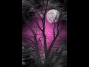 И скучает в небе звёздном, одинокая Луна...