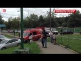 На юге Москвы из горящей квартиры спасли пять человек.