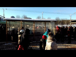 Видеофакт: массовка строем возвращалась с турнира на приз Лукашенко (2)