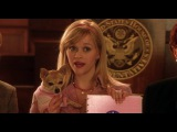 Legally Blonde 2 - Red White and Blonde 2003