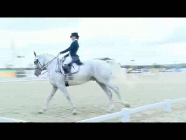 Победительница чемпионата России по конному спорту, эфир от 04.10.2016