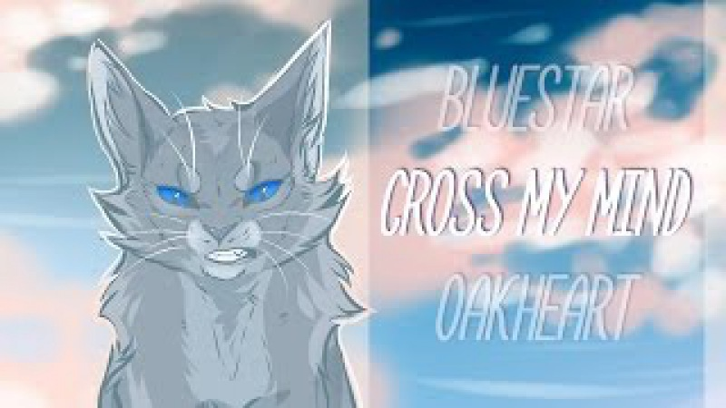 「WARRIORS」Bluestar Oakheart | Cross My Mind - PMV