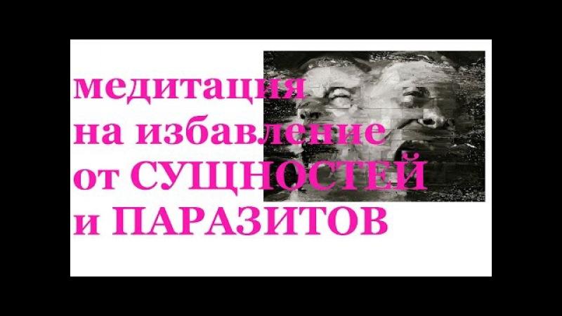 Медитация на избавление от сущностей и паразитов. Николай Пейчев.