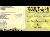 13TH FLOOR ELEVATORS - THE HIGH BAPTISMAL FLOW